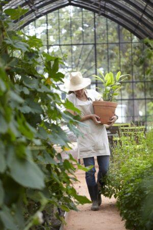 Найти садовника для дачи: 3 важных задачи