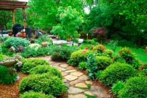 Время выбирать садовника