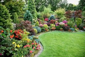 Советы опытного садовника